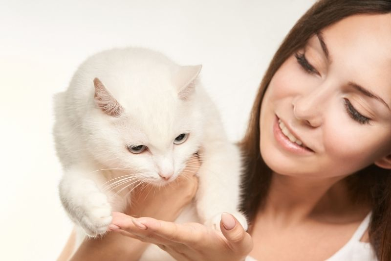 lady holding a white cat