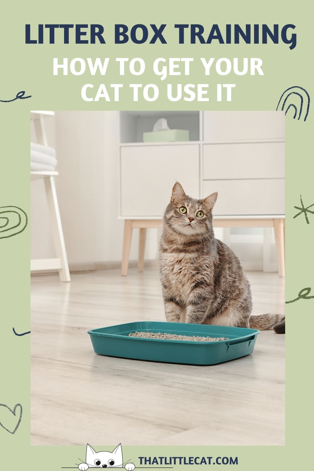 Cat sitting by a litter box